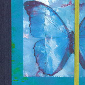 Brush Dance Butterfly Journal